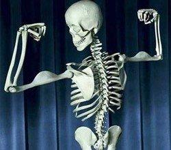 ossos, vitamina D, vitamina k2